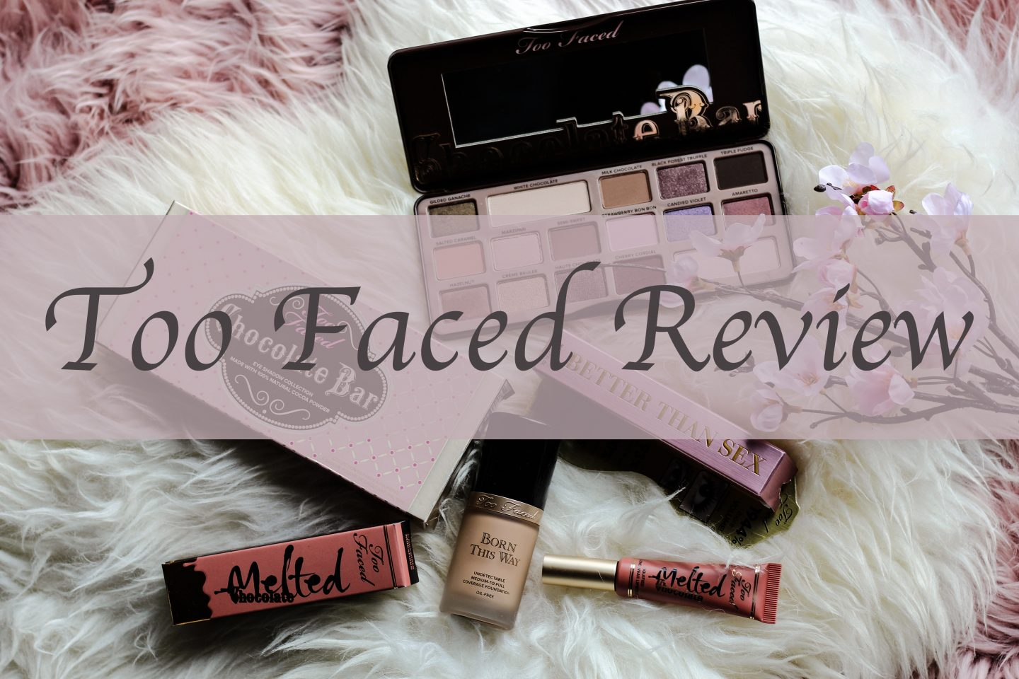 Review Too Faced Cosmetics