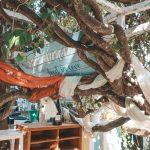 Auf dem Hippiemarkt von Las Dalias in Ibiza gibt es einiges zu sehen